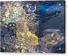Water Monster Acrylic Print by Omaste Witkowski