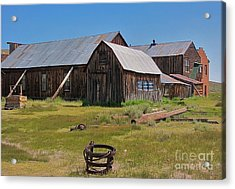 Water Pail - Bodie Acrylic Print by Amy Fearn
