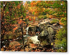 Water Plume Acrylic Print