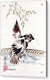 Water Wings Acrylic Print