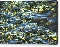 Water World Acrylic Print