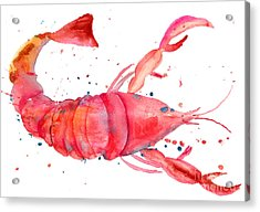 Watercolor Illustration Of Lobster Acrylic Print by Regina Jershova
