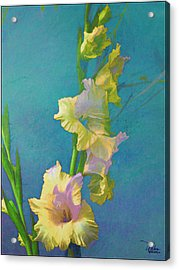 Watercolor Study Of My Garden Gladiolas Acrylic Print