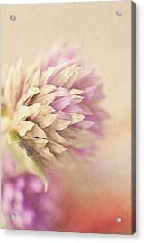 Watercolor Whisper Acrylic Print by Faith Simbeck