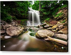 Waterdown Falls - 01 Acrylic Print by Anthony Rego