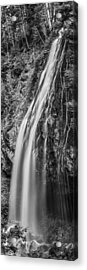 Waterfall 3 Bw Acrylic Print by Chris McKenna