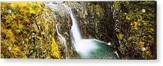 Waterfall, Allt A Choire Ghreadaidh Acrylic Print