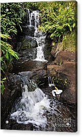 Waterfall And Stream Acrylic Print by Sami Sarkis