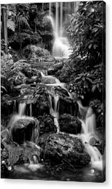 Waterfall At Rainbow Springs Acrylic Print