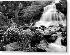 Waterfall Black And White Acrylic Print by Aaron Spong