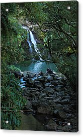Acrylic Print featuring the photograph Waterfall  by Cathy Donohoue