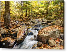Waterfall In The Fall Nh Acrylic Print by James Steele