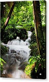 Waterfall Acrylic Print by Kris Dutson