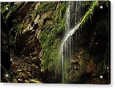 Waterfall Acrylic Print by Mariusz Zawadzki