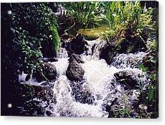 Waterfall Acrylic Print by Michele Kaiser