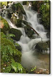 Acrylic Print featuring the photograph Waterfall Mt Rainier National Park by Bob Noble Photography