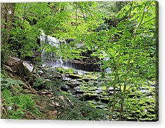 Waterfall Ricketts Glen State Park Pa Acrylic Print