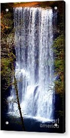 Waterfall South Acrylic Print by Susan Garren
