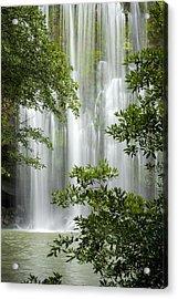 Waterfall Through Trees Acrylic Print by Juan Carlos Vindas