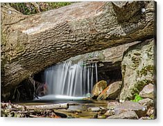 Waterfall Under Fallen Log Acrylic Print by Jonah  Anderson