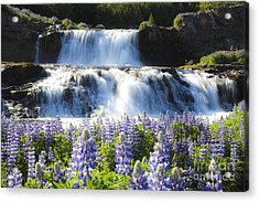 Waterfall With Flowers Acrylic Print