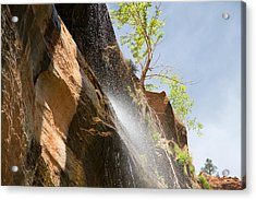 Waterfall Zion National Park Acrylic Print