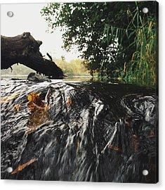 Acrylic Print featuring the photograph Waterfalls Beginnning by Nikki McInnes