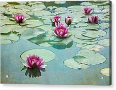 Waterliles Acrylic Print