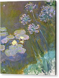 Waterlilies And Agapanthus Acrylic Print by Claude Monet