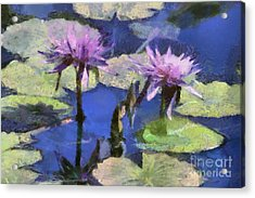 Waterlilies Acrylic Print by Teresa Zieba