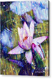Purple Waterlily Paradise Acrylic Print by Carol F Austin