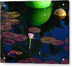 Waterlily Reflection Acrylic Print