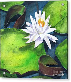 Waterlily Acrylic Print by Susan Herbst
