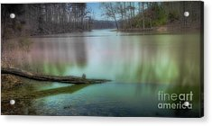 Waterlogged Pe Acrylic Print