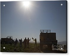 Watermelon Harvest Acrylic Print
