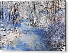 Water's Edge Acrylic Print by A New Focus Photography