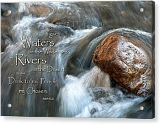 Waters In The Wilderness Acrylic Print