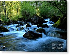 Waters Majestic Acrylic Print by Tim Rice