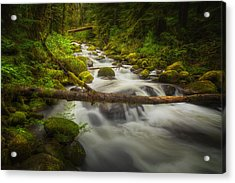 Waters Of Larch Mountain Acrylic Print by Stuart Deacon