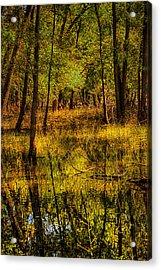 Watery Ramble Acrylic Print by Kimberleigh Ladd