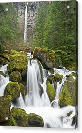 Watson Creek And Falls, Oregon Acrylic Print by William Sutton