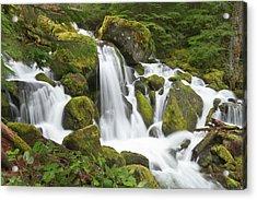 Watson Creek, Oregon Acrylic Print