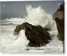 Wave At Shore Acres Acrylic Print by Bob Christopher
