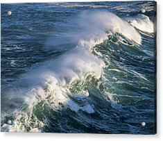 Wave Breaking At Shore Acres State Park Acrylic Print by Robert L. Potts