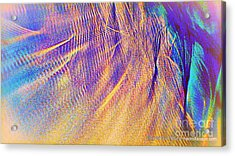 Wave Acrylic Print by JCYoung MacroXscape