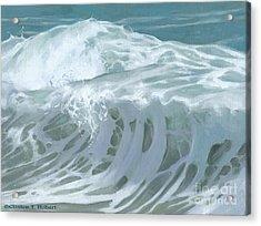 Wave X Acrylic Print by Clinton Hobart