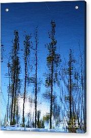 Wavering Acrylic Print by Brian Boyle