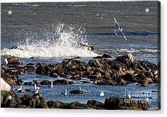 Waves Wind And Whitecaps Acrylic Print