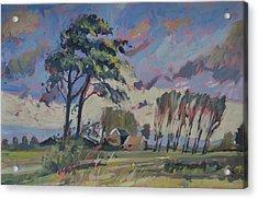 Waving Twin Trees Acrylic Print