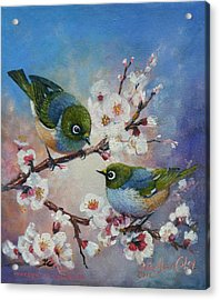 Wax Eyes On Blossom Acrylic Print by Peter Jean Caley